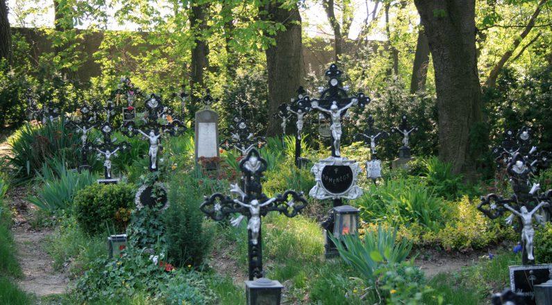 Zentralfriedhof - Gräber der Namenlosen